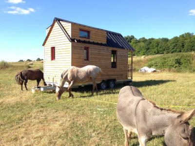 tiny house dans une prairie naturel du Perche (chalet nomade)