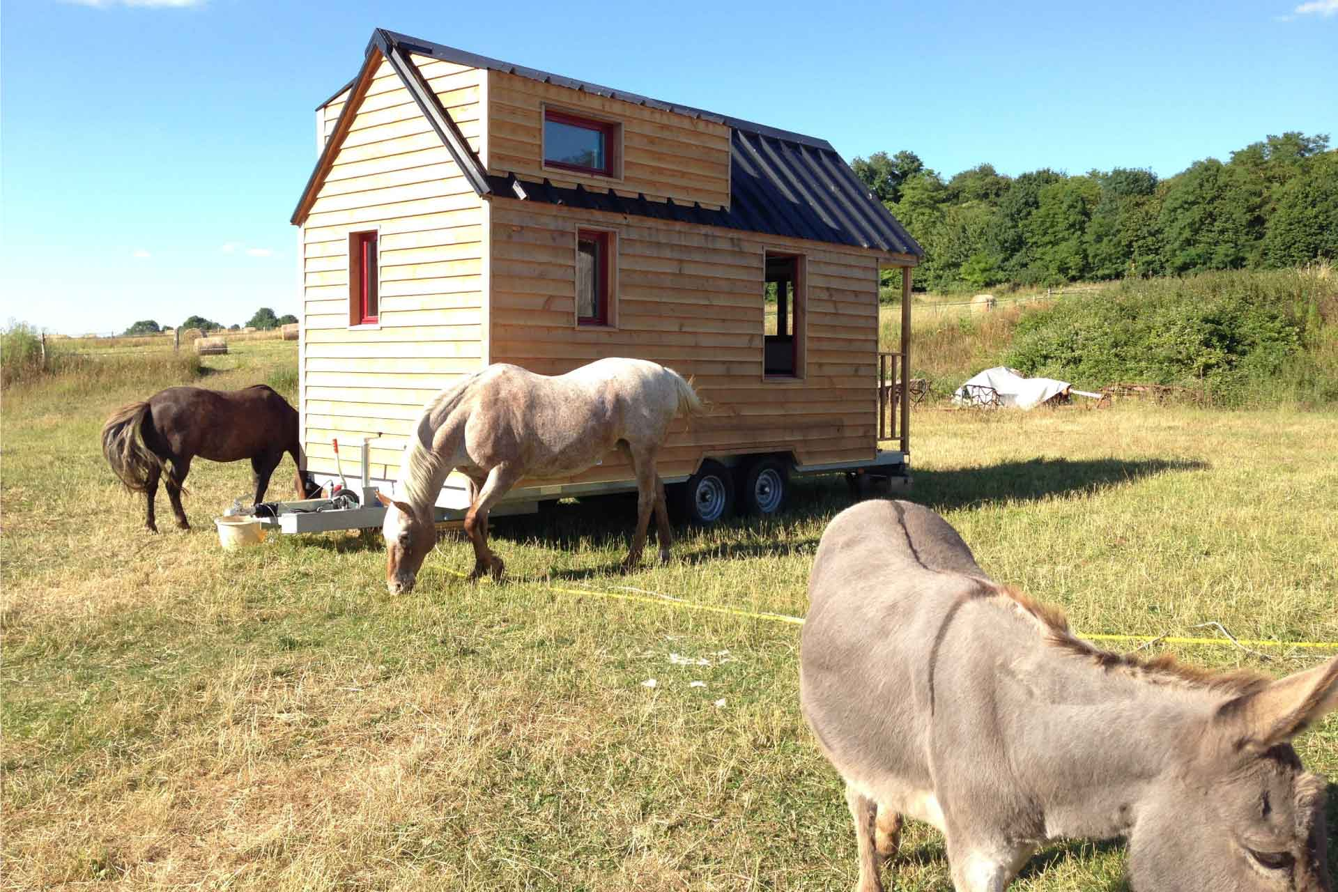Modèle Tiny House L'Harmonie dans une prairie du Perche (chalet nomade)